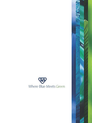 Where Blue Meets Green Brochure
